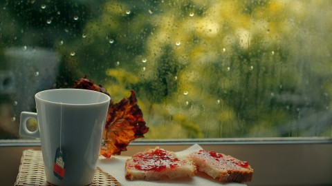Rainy Morning wallpapers high quality