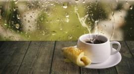 Rainy Morning Wallpaper