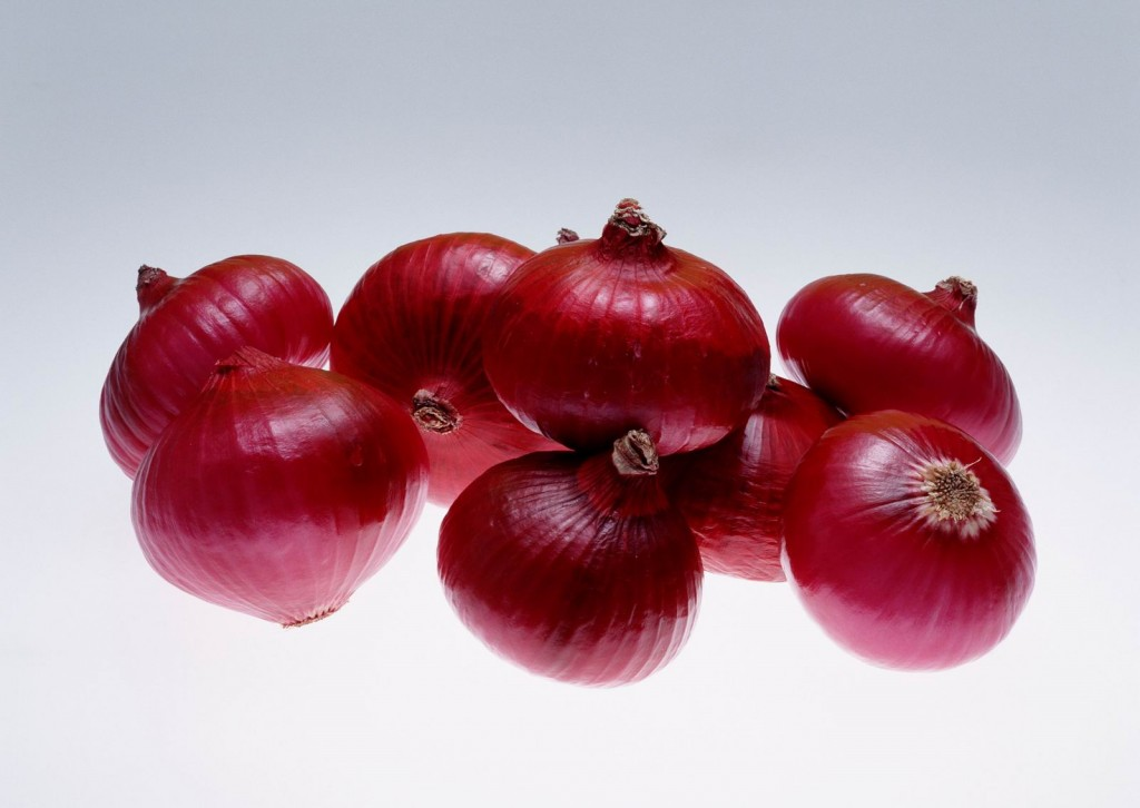 Red Onion wallpapers HD