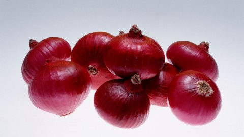 Red Onion wallpapers high quality