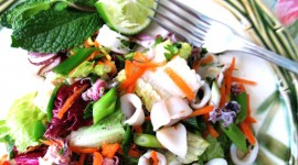 Salad From Squid High Quality Wallpaper