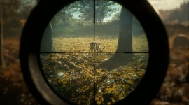 The Hunter Call Of The Wild Photo#1