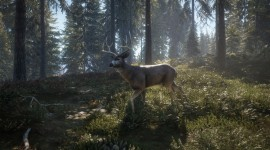 The Hunter Call Of The Wild Photo#3