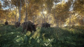 The Hunter Call Of The Wild Pics#1