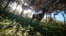 The Hunter Call Of The Wild Pics#3
