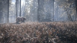 The Hunter Call Of The Wild Pics#5