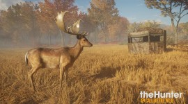 The Hunter Call Of The Wild Picture Download