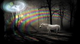 Unicorn Best Wallpaper