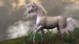 Unicorn High Quality Wallpaper