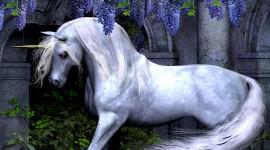 Unicorn Wallpaper For Desktop