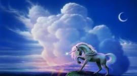 Unicorn Wallpaper High Definition