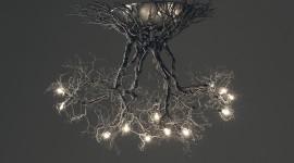 Unusual Lights Best Wallpaper