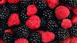 4K Berry Mix Photo Download