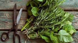 4K Kitchen Herbs Desktop Wallpaper For PC