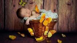 4K Sleeping Babies Wallpaper Download