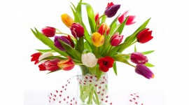 4K Spring Bouquet Photo Download#1