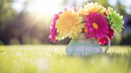 4K Spring Bouquet Wallpaper Free