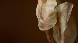 Ballerina Legs Wallpaper For IPhone#3