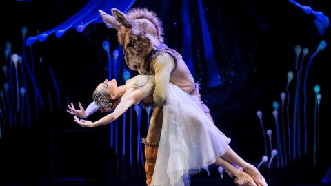 Ballet A Midsummer Night's Dream wallpapers high quality