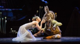 Ballet A Midsummer Night's Dream Photo Free