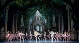 Ballet A Midsummer Night's Dream Photo Free#3