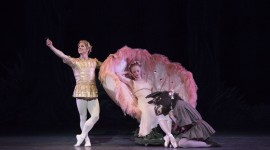 Ballet A Midsummer Night's Dream Photo#2
