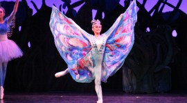 Ballet A Midsummer Night's Dream Pics#1
