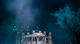Ballet A Midsummer Night's Dream Gallery