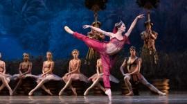 Ballet La Bayadere Wallpaper