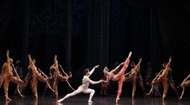 Ballet La Bayadere Wallpaper Download