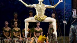 Ballet La Bayadere Wallpaper For Mobile