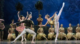 Ballet La Bayadere Wallpaper For PC