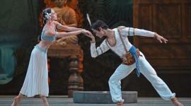 Ballet La Bayadere Wallpaper Free