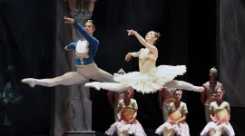Ballet La Bayadere Wallpaper HQ