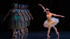Ballet Sleeping Beauty Photo Download