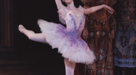 Ballet Sleeping Beauty Wallpaper For Mobile#2
