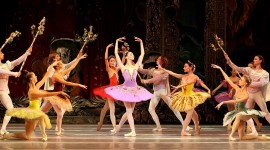 Ballet Sleeping Beauty Wallpaper For PC