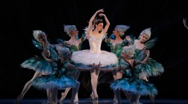 Ballet Sleeping Beauty Wallpaper Free
