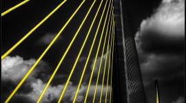 Black Yellow Wallpaper For Desktop