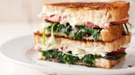 Cheese Sandwich Wallpaper Background