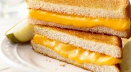 Cheese Sandwich Wallpaper High Definition