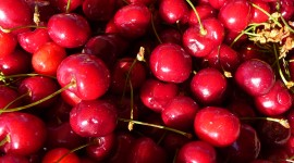 Cherries Wallpaper For IPhone