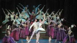Cinderella The Ballet Wallpaper 1080p