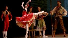 Don Quixote The Ballet Photo