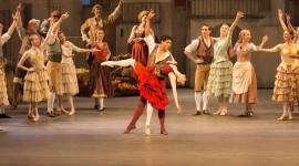 Don Quixote The Ballet Wallpaper Download