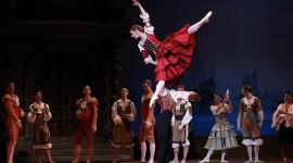 Don Quixote The Ballet Wallpaper Free