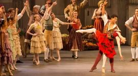Don Quixote The Ballet Wallpaper Full HD