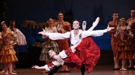 Don Quixote The Ballet Wallpaper HQ#2