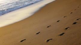 Footprints Of Jesus Christ Wallpaper Free