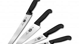 Forks For Food Wallpaper Download Free